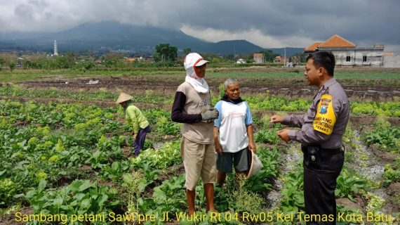 Sambang Petani Sawi Ret Bhabinkamtibmas Kelurahan Temas Polsek Batu Kota