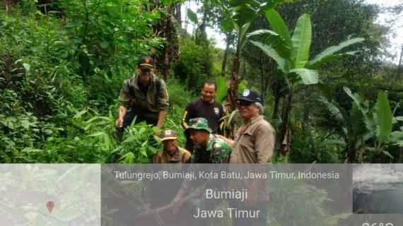 Anggota Bhabinkamtibmas Desa Punten Polsek Bumiaji bergabung dengan Polhut, laksanakan giat tanam pohon