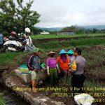 Sambang Petani yang akan panen Bawang Merah , anggota Bhabinkamtibmas Kelurahan Temas Polsek Batu Kota berikan Binluh