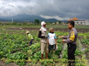 Giat DDS dan Tatap Muka, Sambang Petani Sawi Ret Bhabinkamtibmas Kelurahan Temas Polsek Batu Kota