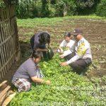Giat Sambang Kerukunan Warga Bhabin Kelurahan Songgokerto Polsek Batu Polres Batu