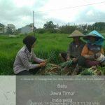 Bhabinkamtibmas Desa Pesanggrahan Polsek Batu Polres Batu Sinergi Masyarakat Tani