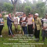 Bhabin Kel Songgokerto Polsek Batu Polres Batu Pendampingan Penyerahan Bantuan Sapi Dari Dinas Pertanian Kota Batu