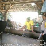 Pelayanan Prima Kepada Masyarakat oleh Polres Batu. Sambang Pagi Kunjungan Potensi Ternak Bhabin Kelurahan Songgokerto Polsek Batu